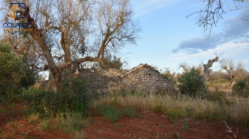 terreno con casa da ristrutturare