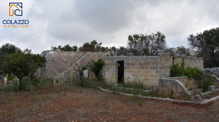 Terreno con Liama a Torre Vado