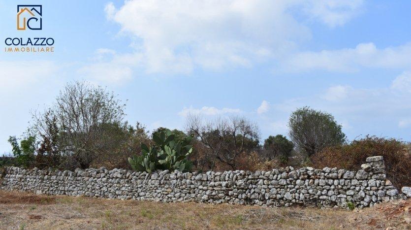 muro a secco salentino San Gregorio