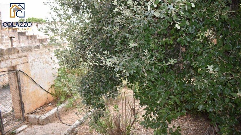 vista giardino Bilocale Casarano locazione